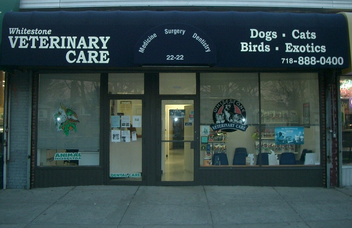 Whitestone Vet Care - Veterinarians serving Nassau County, Rockville Centre, Bayside, and Flushing